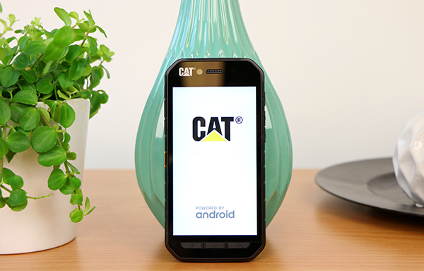 https://www.techtesters.eu/pic/CATS41/901.jpg