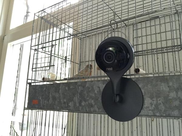 https://www.techtesters.eu/pic/Nest-Cam/IMG_2230.JPG