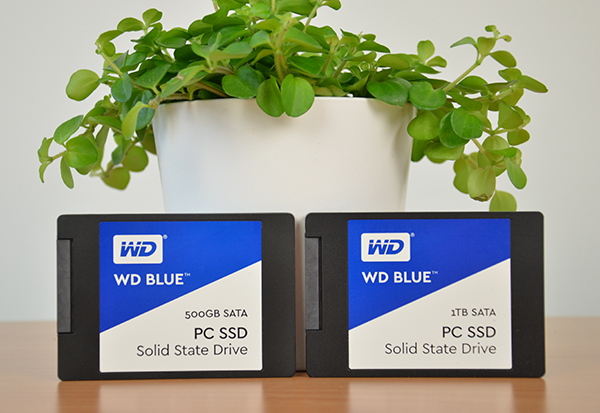 Wd Blue Ssd Review 500gb 1tb Sata Tech Testers